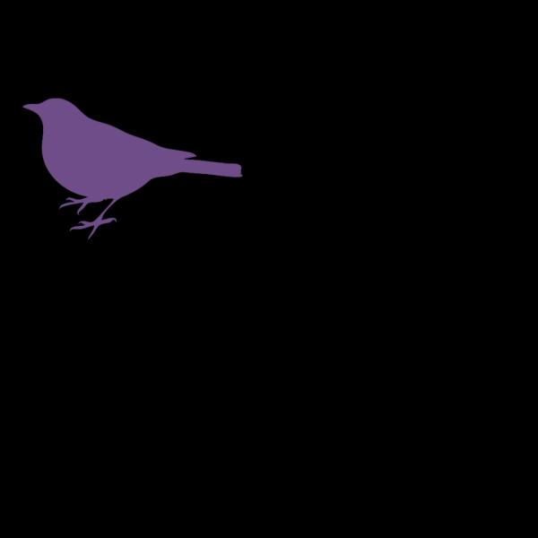Bird PNG Clip art