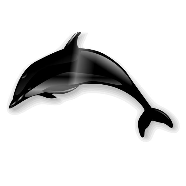 Jumping Dolphins PNG images