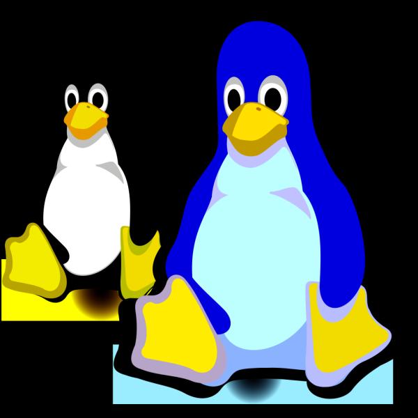 Peguins PNG Clip art