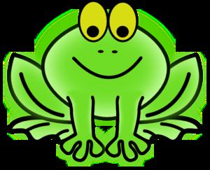 Bug-eyed Frog