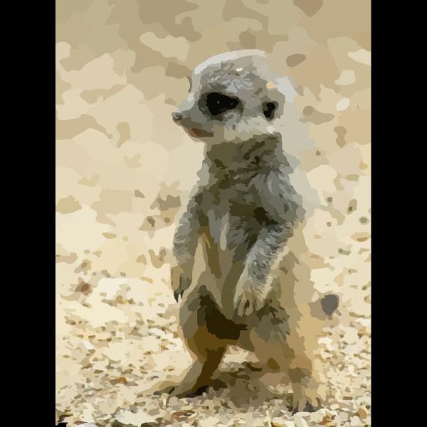 Meerkat PNG images
