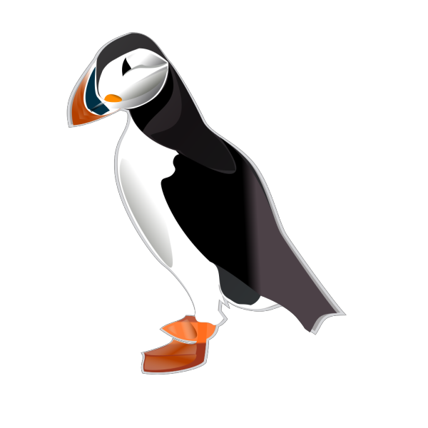 Puffin Md PNG Clip art