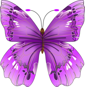 Blue Butterfly PNG images