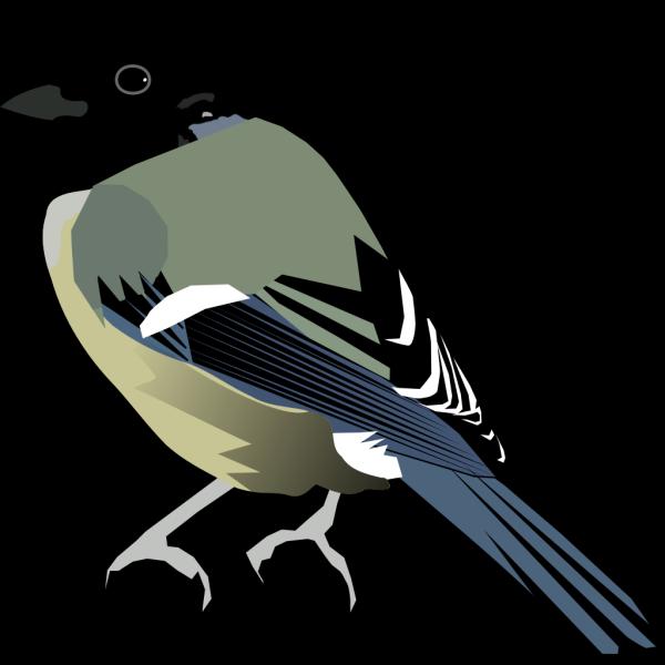 Blue Bird PNG image