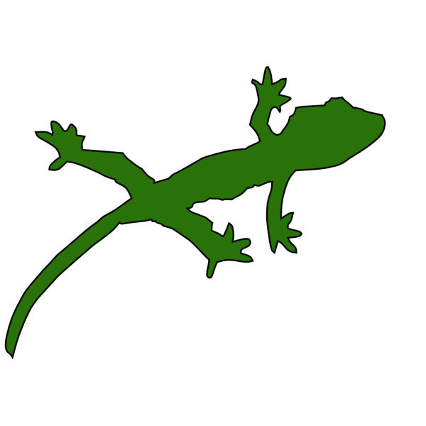 Gecko PNG images
