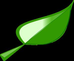 Leaf Border Clipped Art PNG Clip art