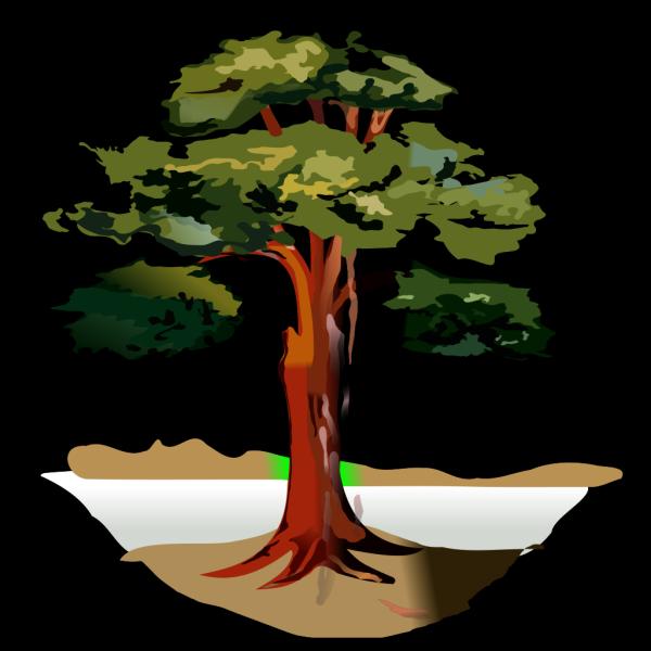 Grey Tree PNG Clip art