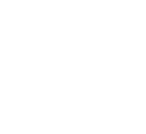 Damask PNG images