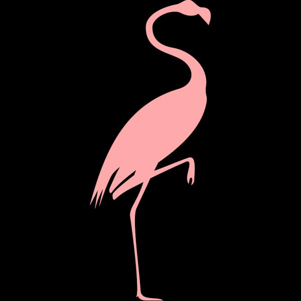Pink Flamingo PNG Clip art