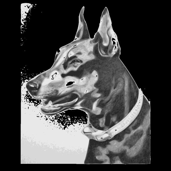 Dog Portrait PNG images