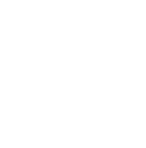 Black And White Flowers PNG Clip art