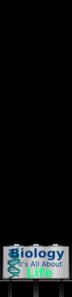 Biology PNG Clip art