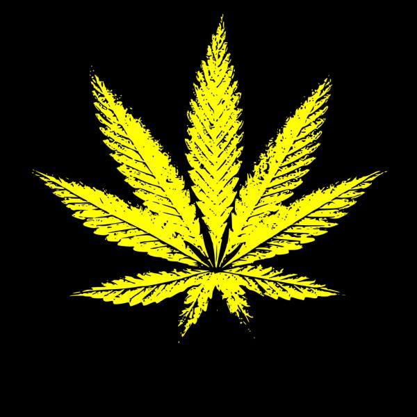 Rag Weed PNG Clip art