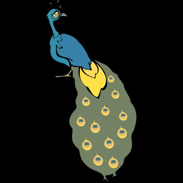 Staring Peacock PNG Clip art