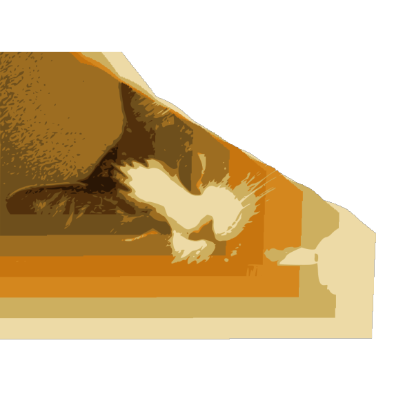 Relaxed Cat On Table PNG images