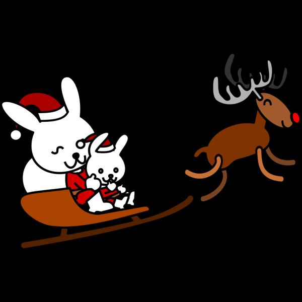 Santa Rabbit PNG Clip art