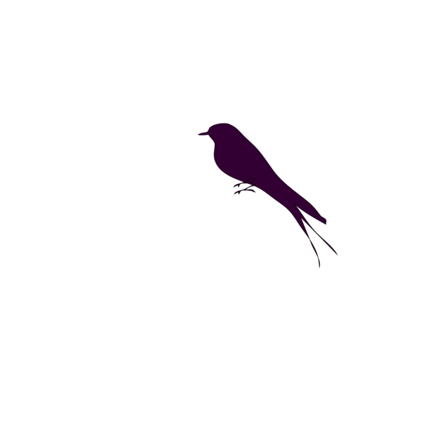 Small Bird On A Branch PNG Clip art