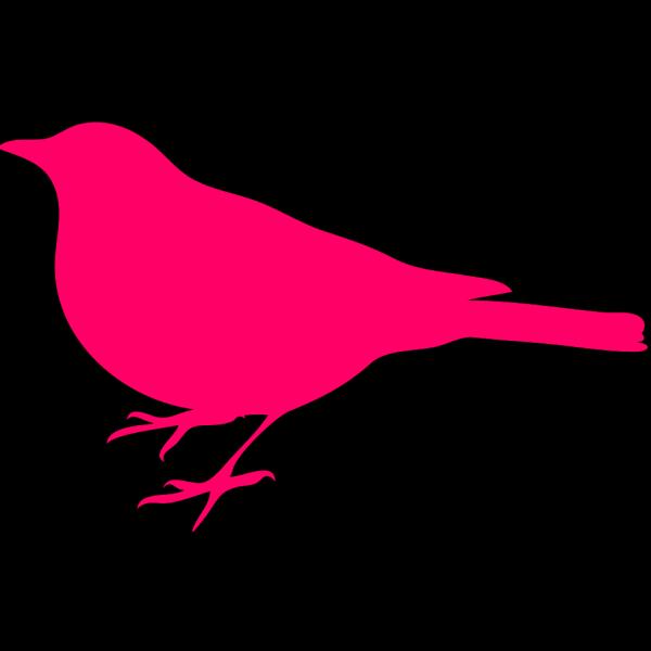 Pink Bird PNG Clip art