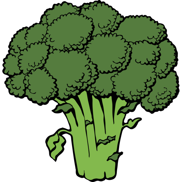 Broccoli PNG images