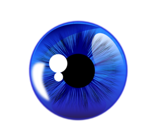 Blue Eye White Back PNG Clip art