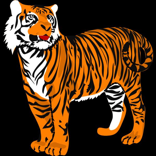 Tigre04 PNG Clip art