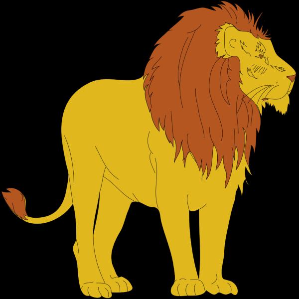Leone 01 PNG Clip art