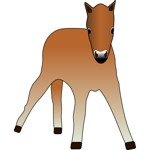 Foal PNG images