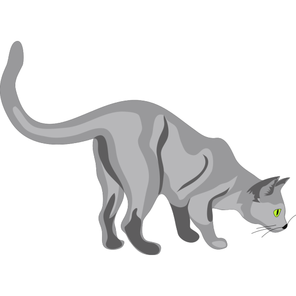 Gatto Cat 2 PNG images