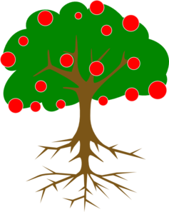 Tree Without Branches PNG Clip art