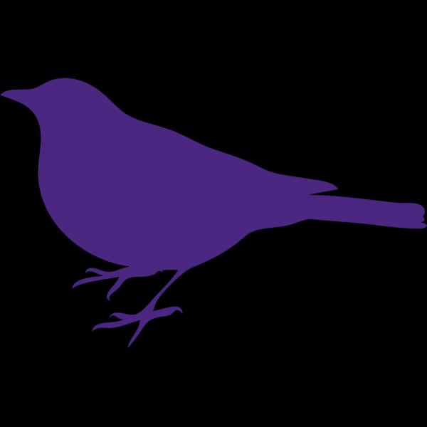 Purp Bird PNG Clip art