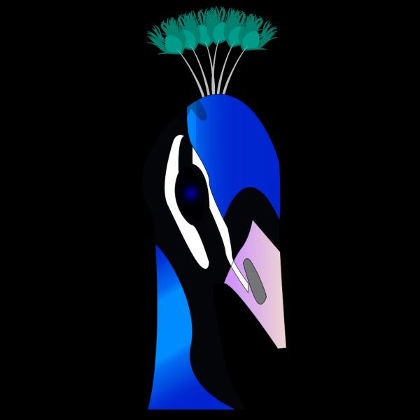 Peacock Head PNG Clip art