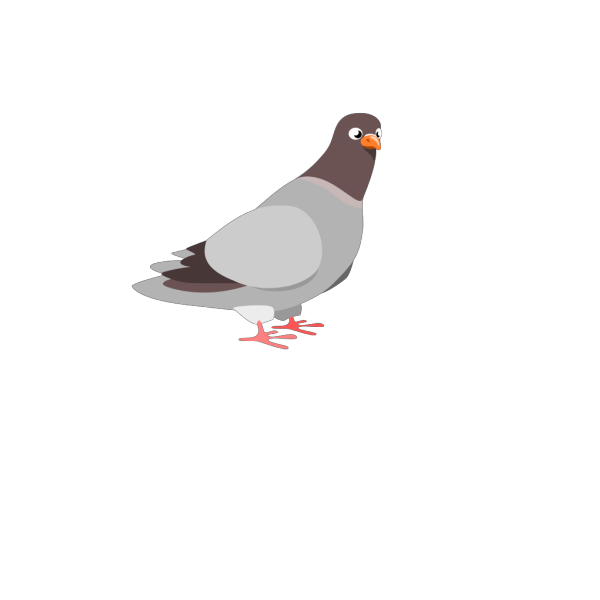 Cartoon Pigeon PNG Clip art