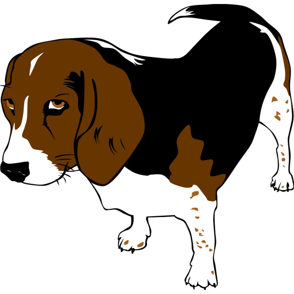 Copper The Beagle PNG images