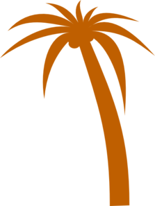 Palm Tree Clip Art PNG images