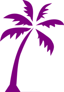 Tropical Beach Palm Tree Clip Art PNG icons