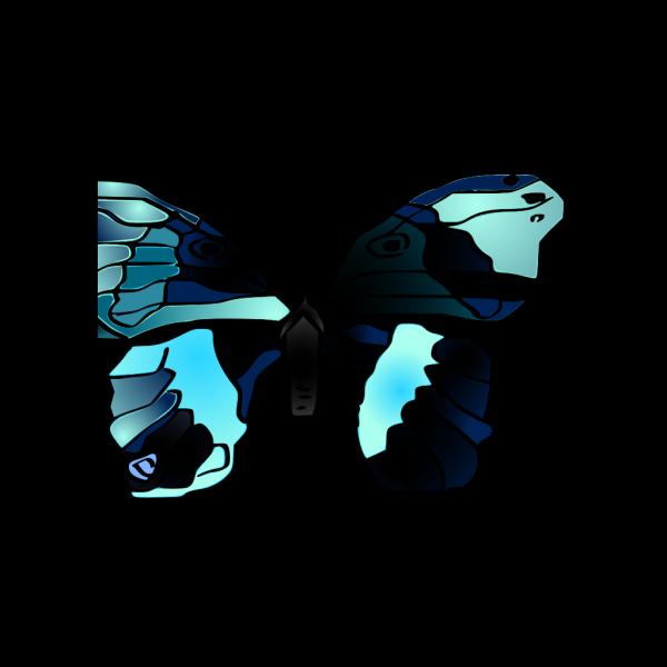 Mariposa Butterfly PNG Clip art