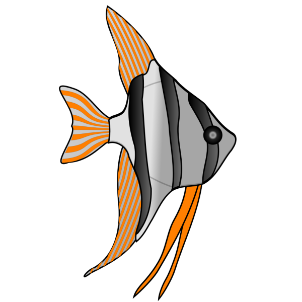 Red And Orange Fish PNG Clip art