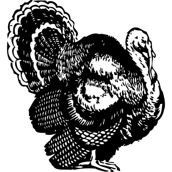 Turkey Black And White PNG Clip art