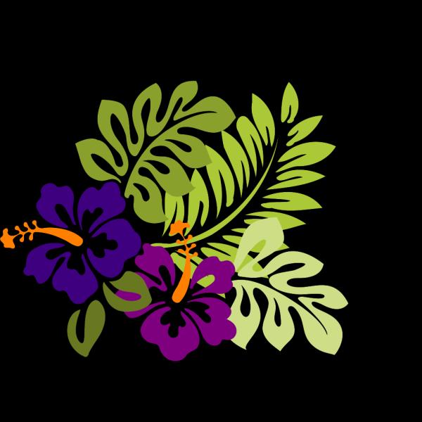 Hibiscus 23 PNG Clip art
