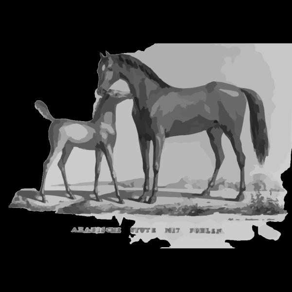 Arabische Stute Mit Fohlen PNG Clip art
