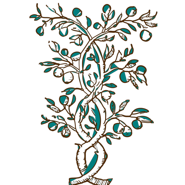 Ahulani Blue And Brown Flowering Branch PNG Clip art