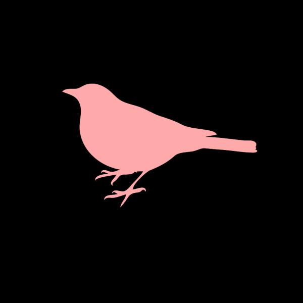 Bird Silhouette Dark PNG Clip art