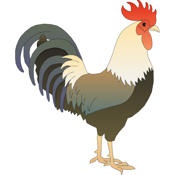 Rooster PNG Clip art