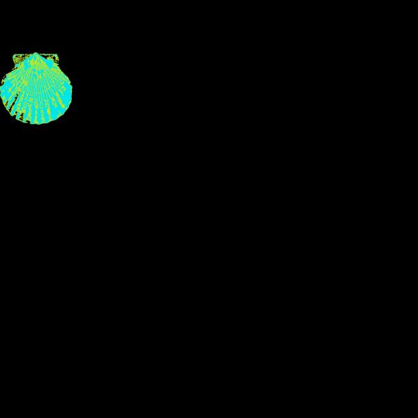 Sea Shell 2 PNG Clip art