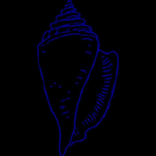 Sea Shell 5 PNG Clip art