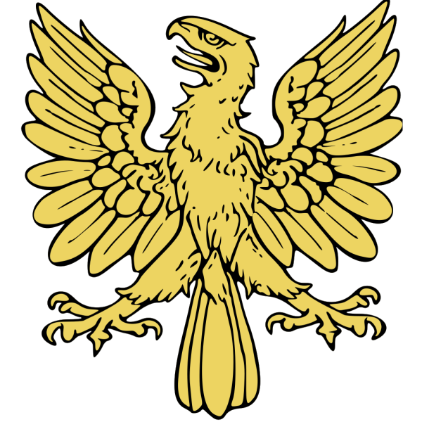 Soaring Eagle PNG icon