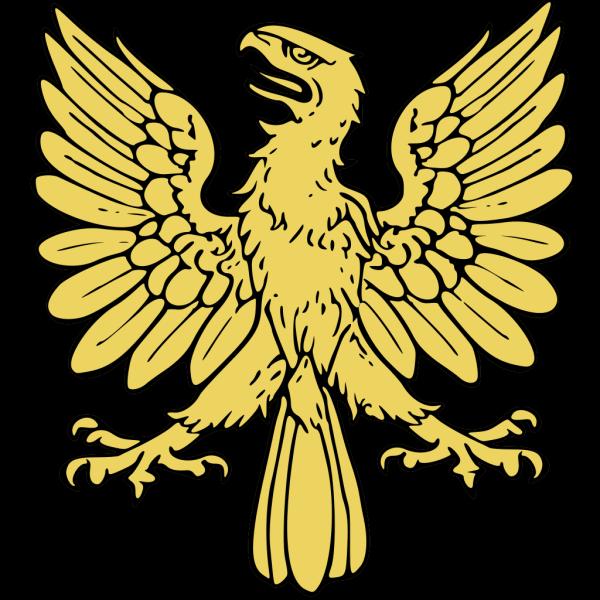Soaring Eagle PNG images