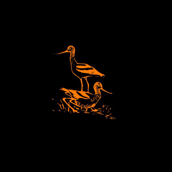 Birds PNG Clip art