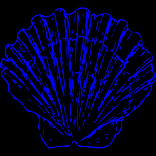 Bright Blue Shells PNG Clip art