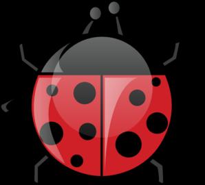 Green Ladybug PNG images